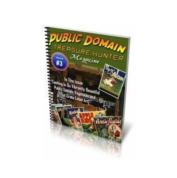 Public Domain Treasure Hunter Magazine Issue 3